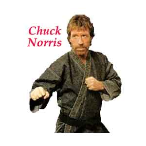 Chuck Norris Bring On The Pain Mobile Game