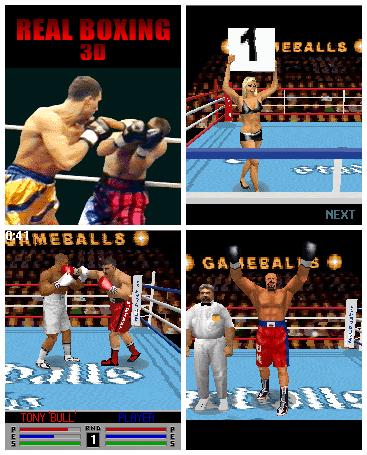 Real Boxing 3D Mobile Game