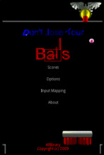 Don't Lose Your Balls 1.1.3 Mobile Game