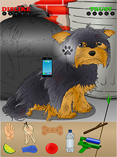 Poor Little Dog: Yorkie Mobile Game