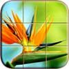 Nature Photo Puzzle Free Mobile Game