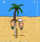 Volley Balley 1.0 Mobile Game