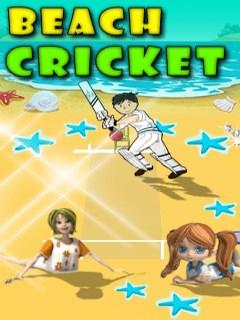 Beach Cricket Mobile Game