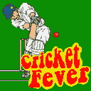 Cricket Fever Mobile Game