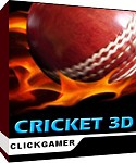 Cricket 3D Mobile Game