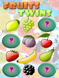 Fruits Twins Mobile Game