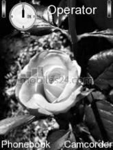 White Rose Mobile Theme