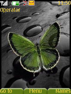 Green Butterfly Theme  Mobile Theme