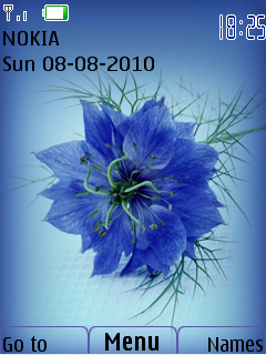 Flower Nokia Theme Mobile Theme