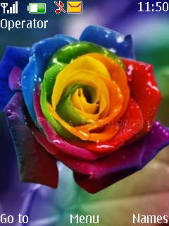 Colorful Flower Mobile Theme