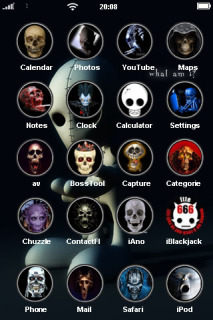 Skulls ICons IPhone Theme  Mobile Theme