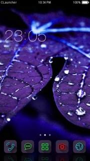 Blue Rain Drops Leafs Android Theme Mobile Theme