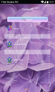 Purple Flower And Sunflower Little Android Theme Mobile Theme