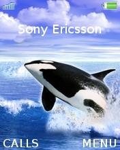 Orca Mobile Theme