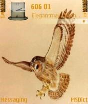 Owl  Mobile Theme