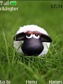 Sheep Mobile Theme