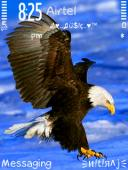 Eagle Mobile Theme