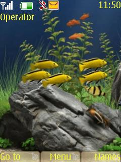 Aquarium Nokia Theme Mobile Theme