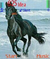 Horse Griff Nokia Theme Mobile Theme