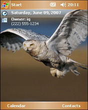 Owl Animal Htc Theme Mobile Theme