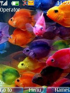 Fish Animated Theme Mobile Theme
