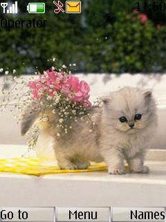 Cute Cat Mobile Theme