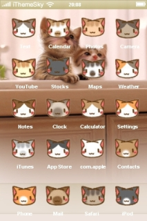 Cute Face Cats Free IPhone Theme Mobile Theme