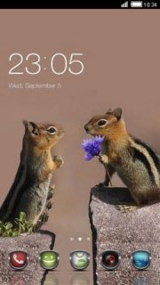 Lover Squirrels Flower Android Theme Mobile Theme