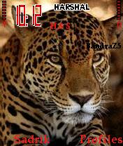 Jaguar Mobile Theme