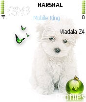 Doggy Mobile Theme