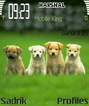 Dogs Mobile Theme