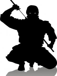 Ninjas Mobile Theme