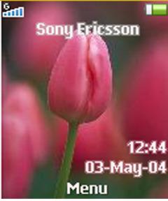 Tulip Mobile Theme