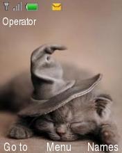 Halloween Cat Mobile Theme