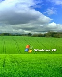 Windows 7 And XP Mobile Theme