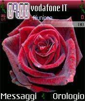 Rosa Rossa Theme Mobile Theme