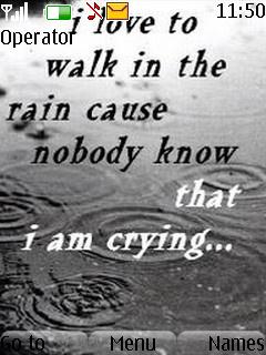 Walk In The Rain Mobile Theme