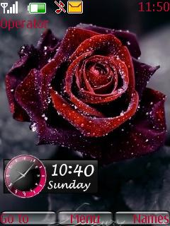 Rose Dual Clock Mobile Theme