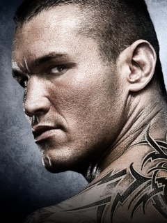 Randy Orton Mobile Theme