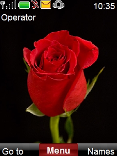 Red Rose Mobile Theme