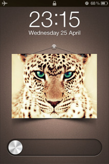 Chrome Feline LS IPhone Theme Mobile Theme