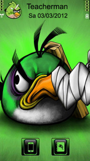 Angry Bird Green Mobile Theme