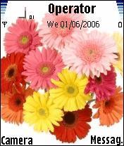 Flower Mobile Theme