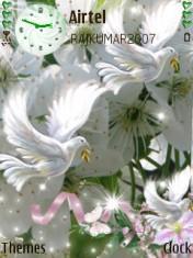Beauty Doves Mobile Theme