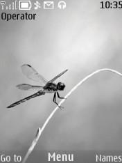 Lady Dragonfly Mobile Theme