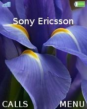 Flower Blue Mobile Theme