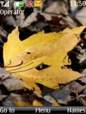 Autumn Leaf Nokia Theme Mobile Theme
