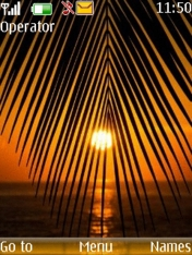 Sunset Palm Nokia Theme Mobile Theme