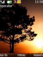 Sunset Tree Nokia Theme Mobile Theme