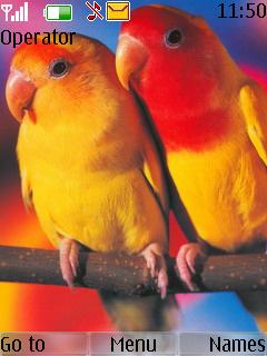 Parrot Nokia S40 Theme Mobile Theme